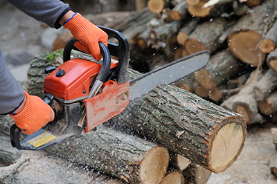 Chainsaw and equipment for Professional Tree Service