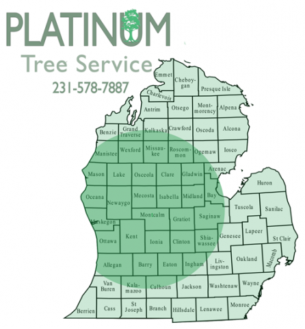 Platinum Tree Service LLC Service Area